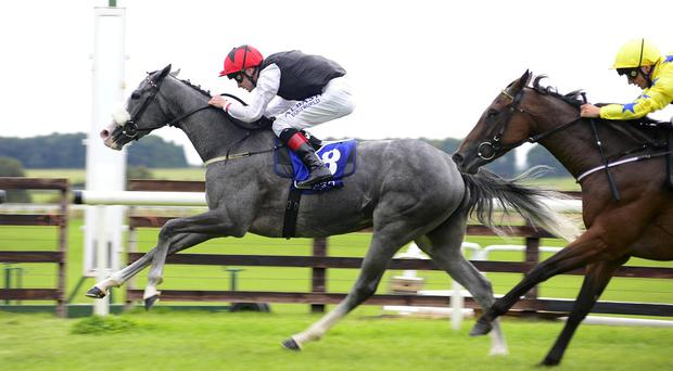 Carla Bianca holds on under Pat Smullen