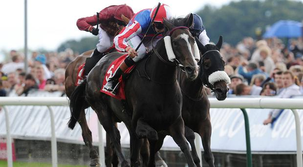 Mutual Regard wins the Ebor