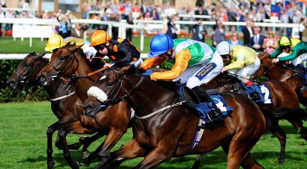 Out in front: Home Cummins, with Jack Garrity aboard, just gets up to win the EBF Carrie Red Fillies Nursery Stakes at Doncaster's St Leger meeting yesterday
