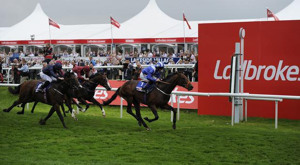 War Envoy (left) is an honourable second in the Champagne