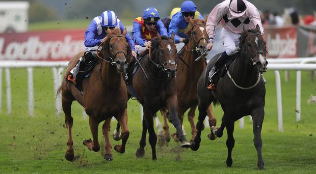 Ansgar (right) hangs on in the Park Stakes