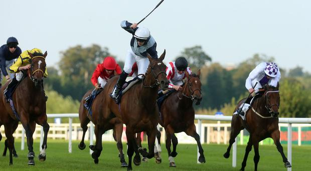 Fiesolana gets up in the Matron Stakes