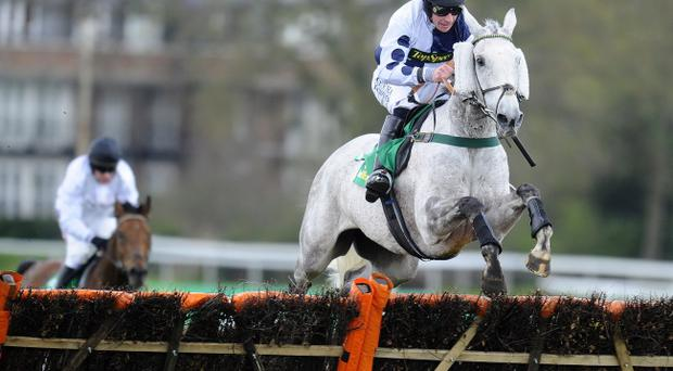 Charged: Richie McGrath, who is facing BHA charges, won the Scottish Grand National at Ayr on Ryalux