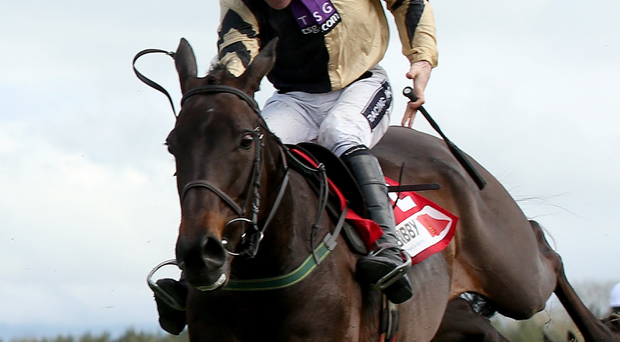 Tip for the top: Ruby Walsh and Boston Bob can win today's Down Royal Festival feature, the JNwine.com Champion Chase