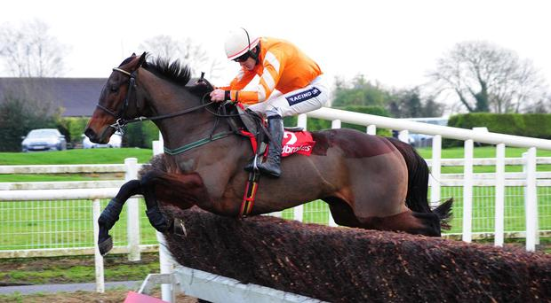Twinlight puts in a good jump at the last under Ruby Walsh