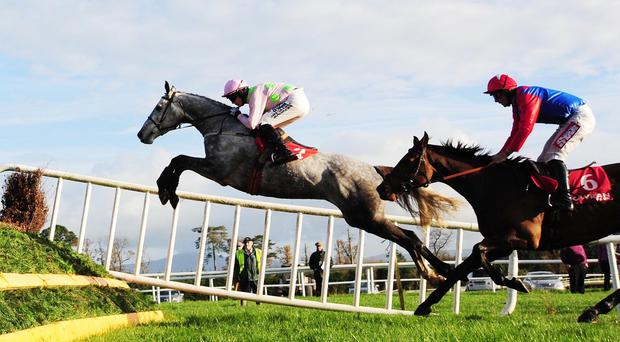Ballycasey puts in an extravagant leap