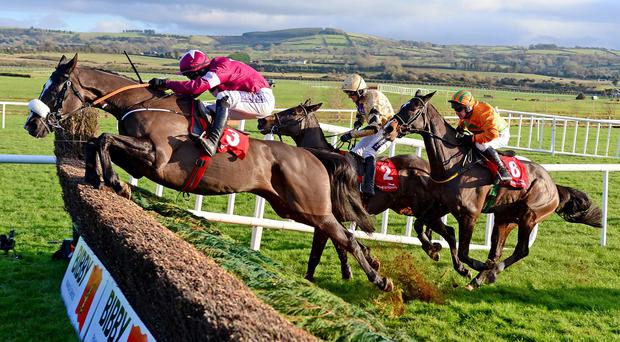 Don Cossack puts in a flying leap at the final fence
