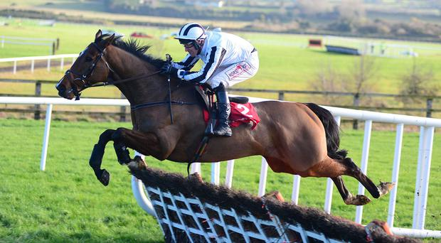 Rock The World and Robbie Colgan are clear at the last