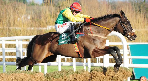 A fine leap from Sizing John on his way to victory