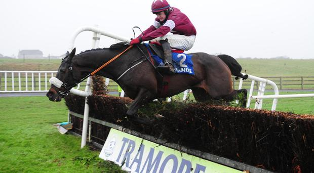 Roi Du Mee and Kevin Sexton jump the last to win the At The Races Chase