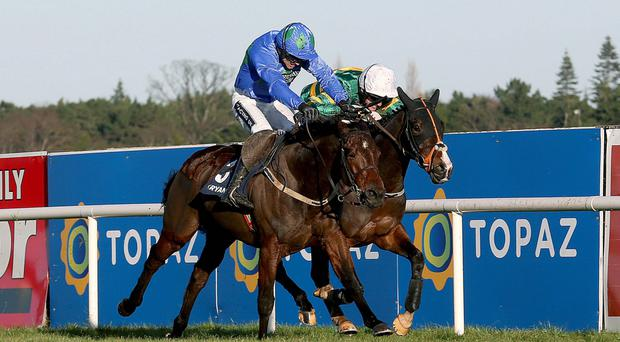 Close call: Hurricane Fly (left), with Ruby Walsh on board, gets the better of Tony McCoy-ridden Jezki in the Ryanair Hurdle at Leopardstown