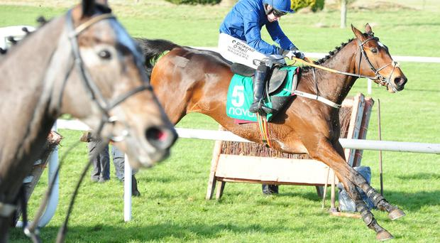Rogue Trader and Nina Carberry en route to winning the Navan Membership Maiden Hurdle