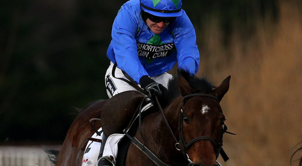 Hurricane Fly, with Ruby Walsh on board, on the way to victory in the Irish Champion Hurdle at Leopardstown