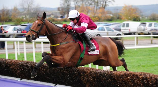 Down Royal 1-11-14 ROAD TO RICHES & Paul Carberry Jump the last to win the Grade 1 JNwine Champion Steeplechase.(WWW.HEALYRACING.IE)