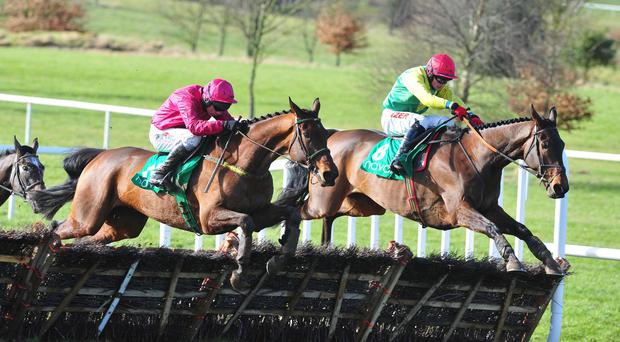 Wildebeest (near) jumps the last with Sizing Titanium