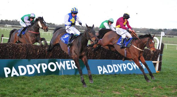 Miss Xian (blue and white silks) got back up to beat Bohar Clei (maroon) in the Leinster National