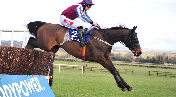 Fine Rightly wins at Naas