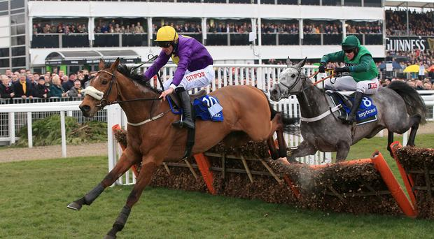 Windsor Park ridden by Davy Russell (left) winning the Neptune Investment Management Novices' Hurdle