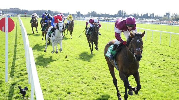 Fairyhouse 6-4-2015.DEDIGOUT and Paul Carberry cross the line to win for trainer Tony Martin.Photo HEALY RACING.