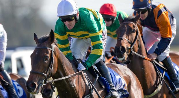 All over now: Tony McCoy on Rathpatrick at Fairyhouse, the Ulster great's last appearance in Ireland