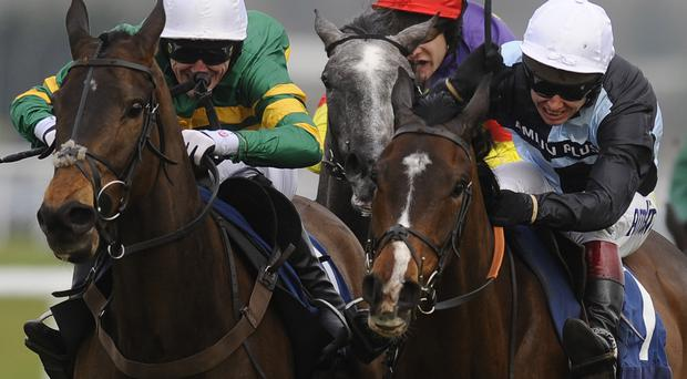 Class act: Tony McCoy will ride favourite Shutthefrontdoor (far left) in the Grand National