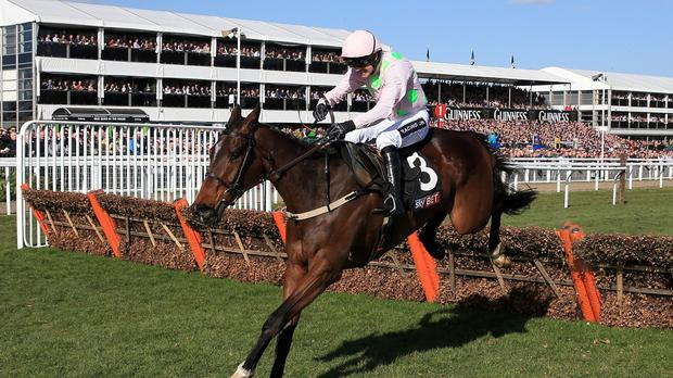 Douvan jumps the last to win the Supreme Novices' Hurdle at the Cheltenham Festival
