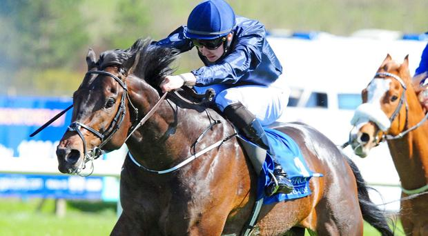 The Happy Prince winning at Limerick