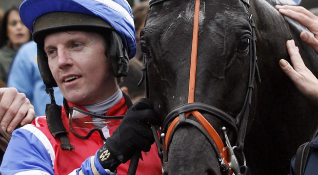 Looking to future: Noel Fehily is taking a new route