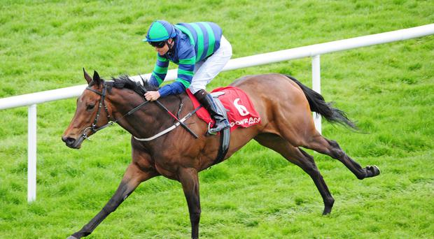 Duchess Andorra on her way to victory at Gowran