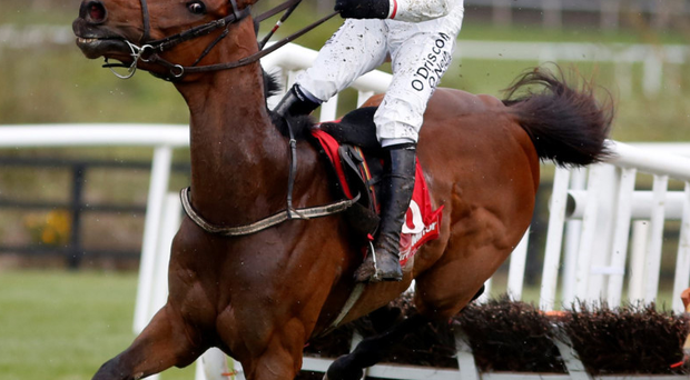 Steady on: Killultagh Vic, Paul Townend in the saddle, on the way to victory on day two at the Punchestown Festival