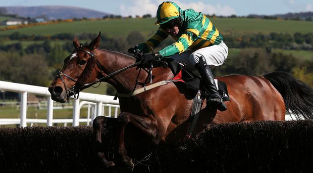 Jacksonslady wins at Punchestown