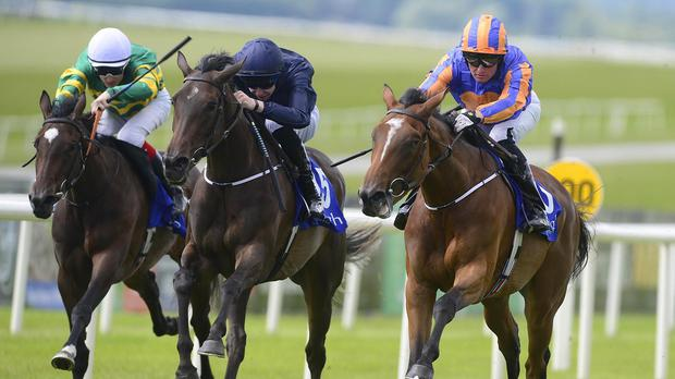 Found (right) misses the 1000 Guineas on Sunday