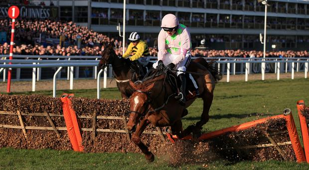 Annie Power crashes out at the final flight at Cheltenham