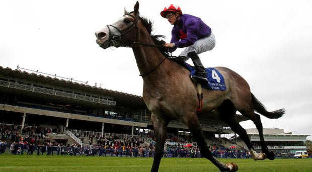 Glory Days: Success Days on way to victory at Leopardstown