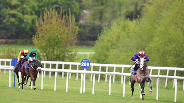 Success Days streaks clear in the Derby Trial