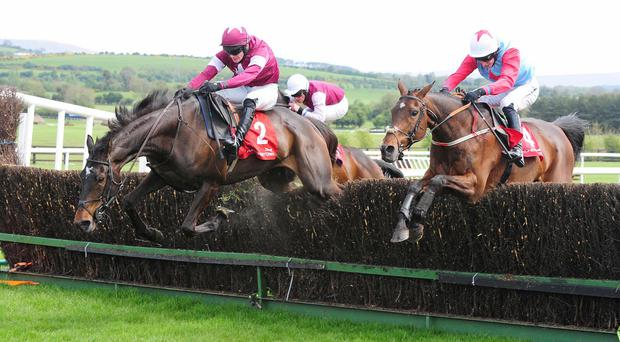 Real Steel makes a mess of the last but goes on to win