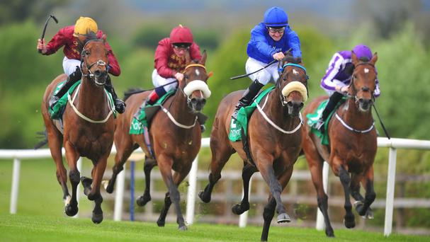 Toscanini takes charge under Shane Foley