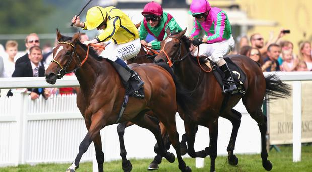 Crowning glory: Rizeena (left) wins last year's Coronation Stakes at Royal Ascot