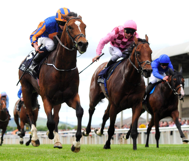 Take-off: Gleneagles (left) storms to victory in the Irish 2,000 Guineas at the Curragh
