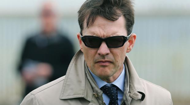 Derby bid: Aidan O'Brien says Gleneagles is set for Epsom