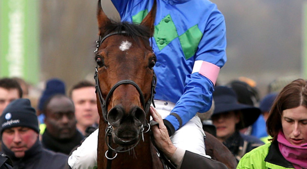 Champions: Ruby Walsh is confident his partnership with Ulster-owned Hurricane Fly can lead to yet more success