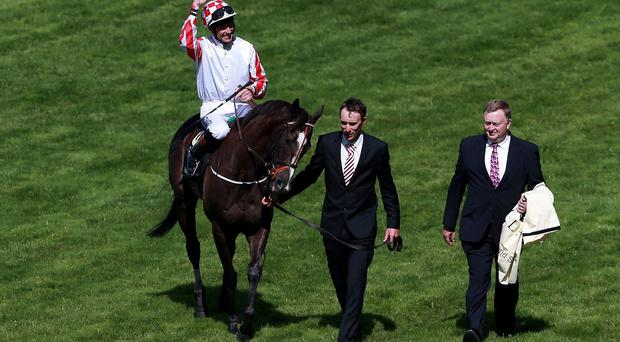 Sole Power after his second King's Stand success