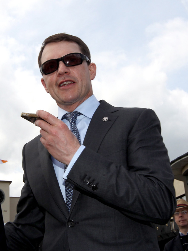 Beautiful: Aidan O'Brien is delighted with the condition of the Curragh ahead of the Irish Derby