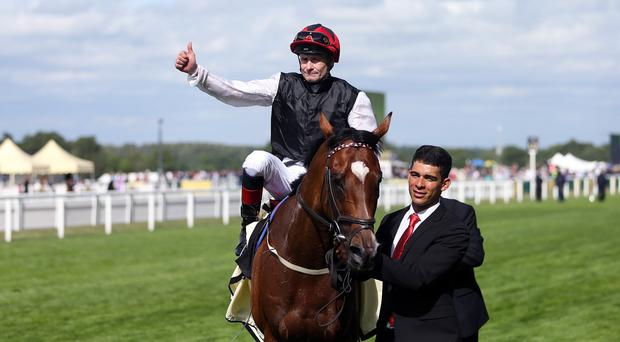 Free Eagle after winning the Prince Of Wales's Stakes at Royal Ascot