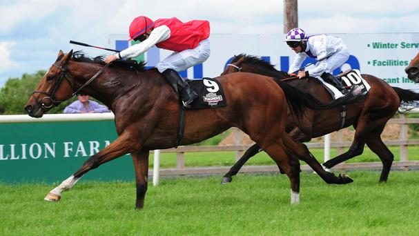 Botany Bay wins at Down Royal