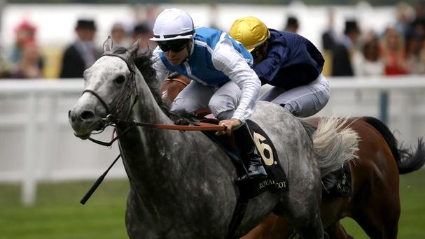 Solow is heading for a potential showdown with Gleneagles at Goodwood