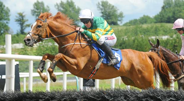 Barry Geraghty back from injury aboard Waver