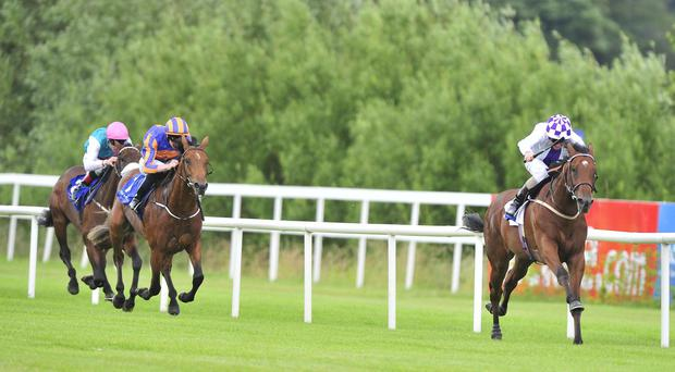 Sanus Per Aquam wins at Leopardstown