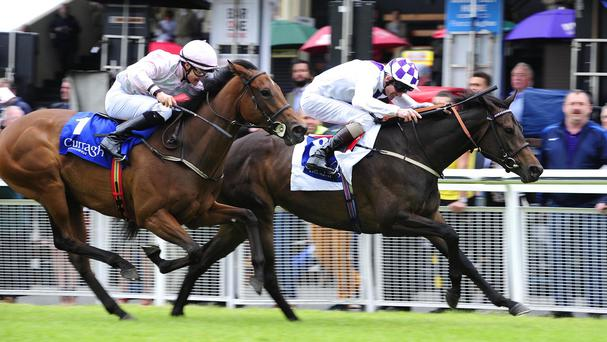 Leafy Shade wins at the Curragh