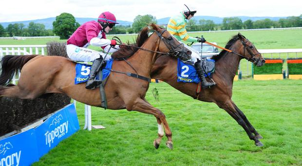 Coldstonesober (near) challenges Gallant Tipp at the last before winning at Tipperary